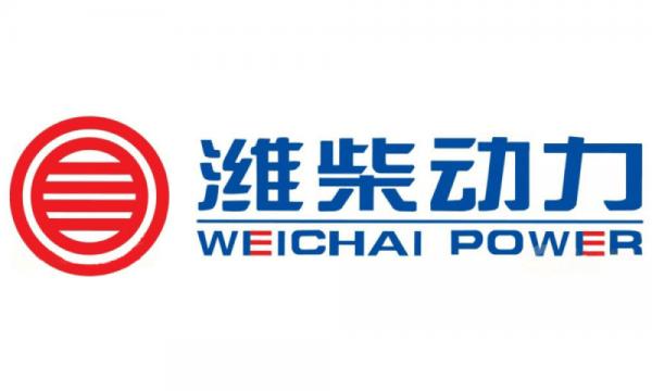 Запчасти для двигателей Weichai WD10, WD615